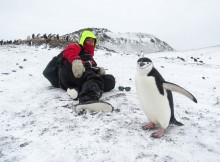 Lesley Carter with a penguin in Antarctica