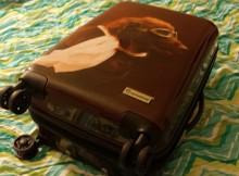 Pilot dog suitcase