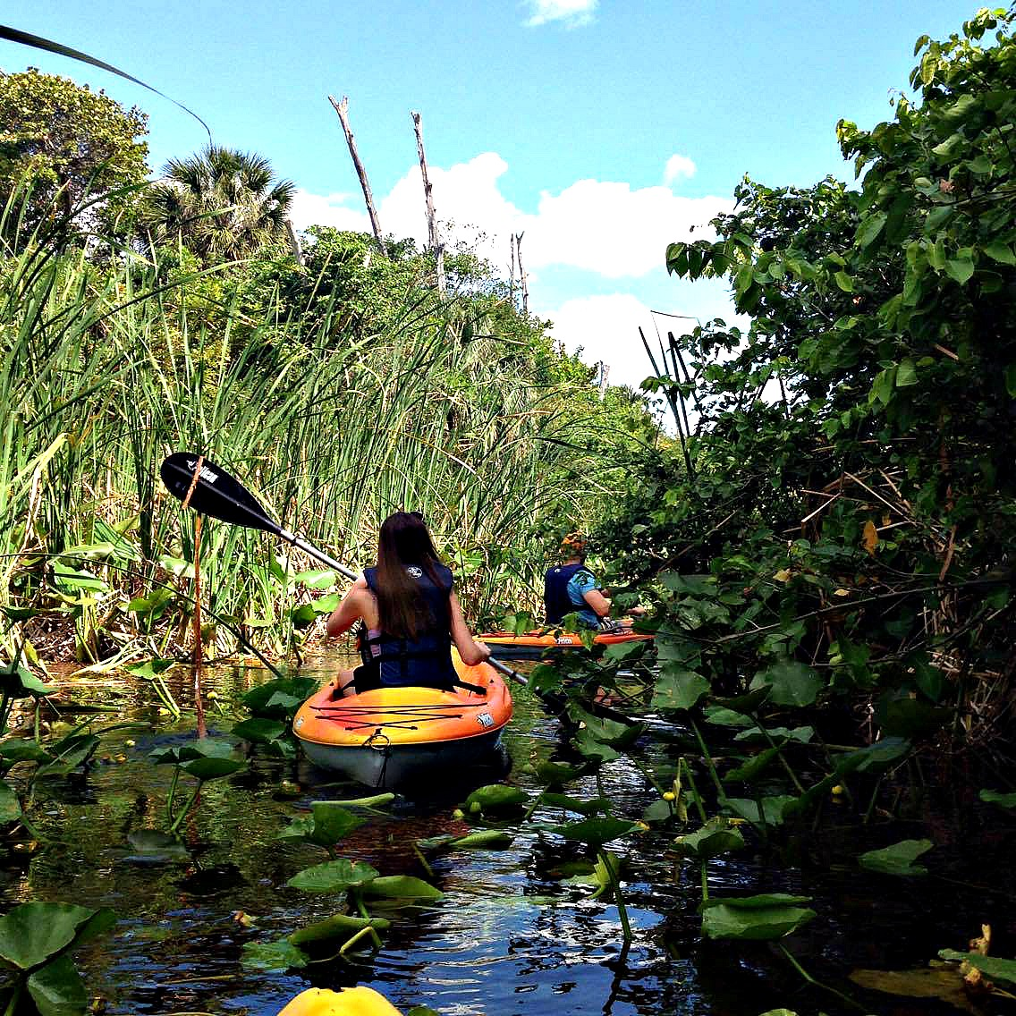Lagoon_Kayakers